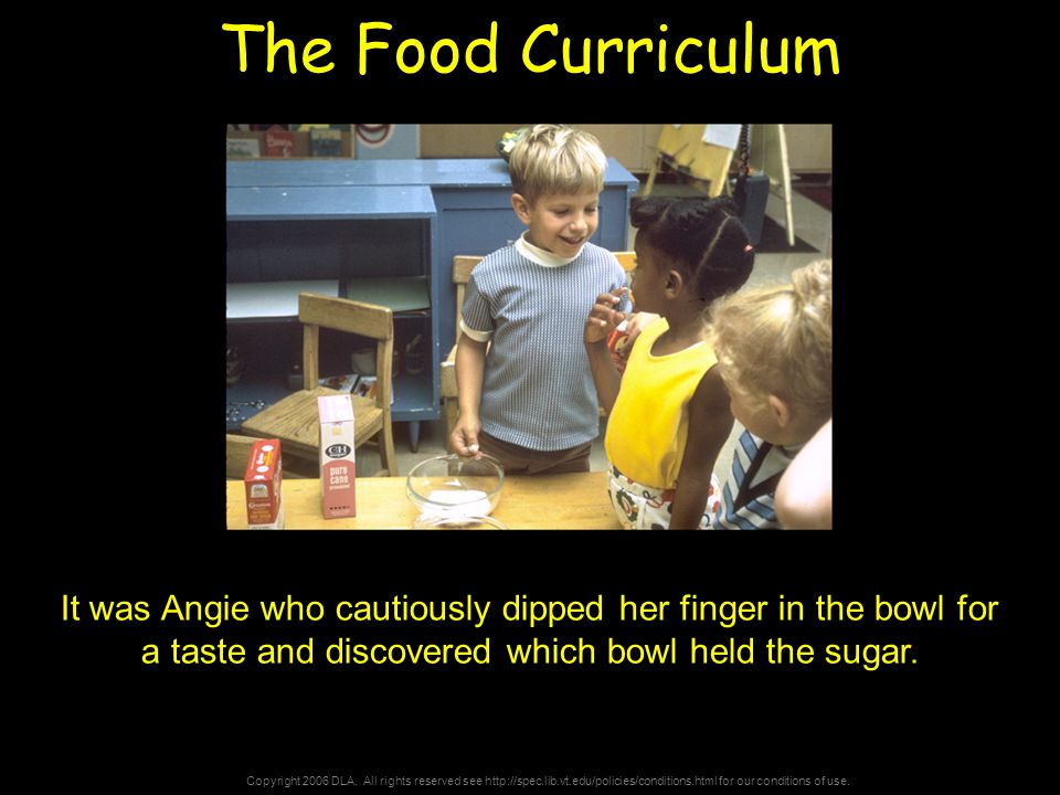 Copyright 2006 DLA. All rights reserved see http://spec.lib.vt.edu/policies/conditions.html for our conditions of use. The Food Curriculum It was Angi