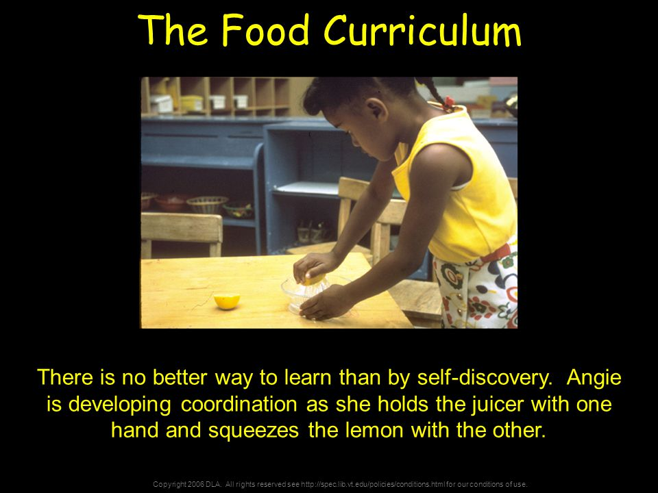 Copyright 2006 DLA. All rights reserved see http://spec.lib.vt.edu/policies/conditions.html for our conditions of use. The Food Curriculum There is no