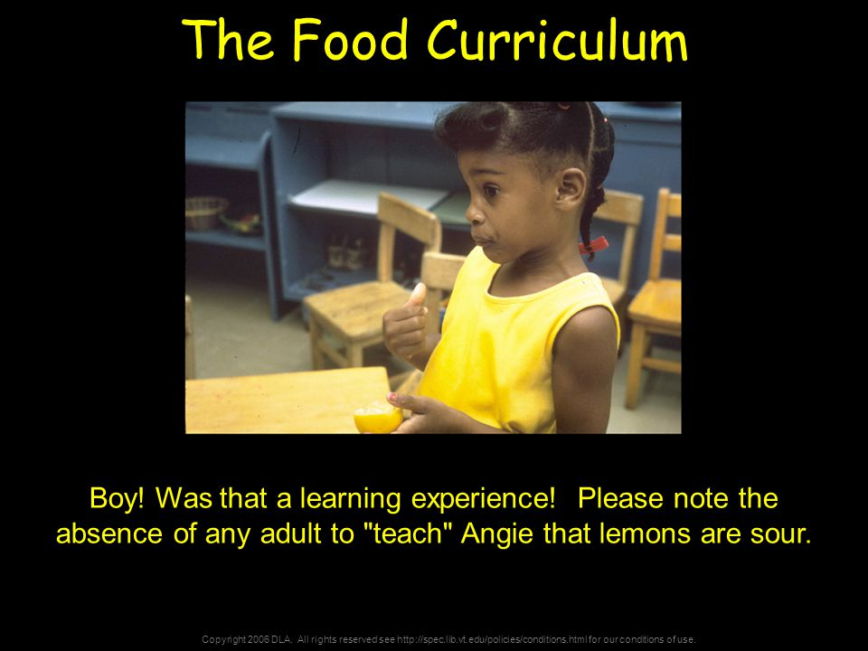 Copyright 2006 DLA. All rights reserved see http://spec.lib.vt.edu/policies/conditions.html for our conditions of use. The Food Curriculum Boy! Was th