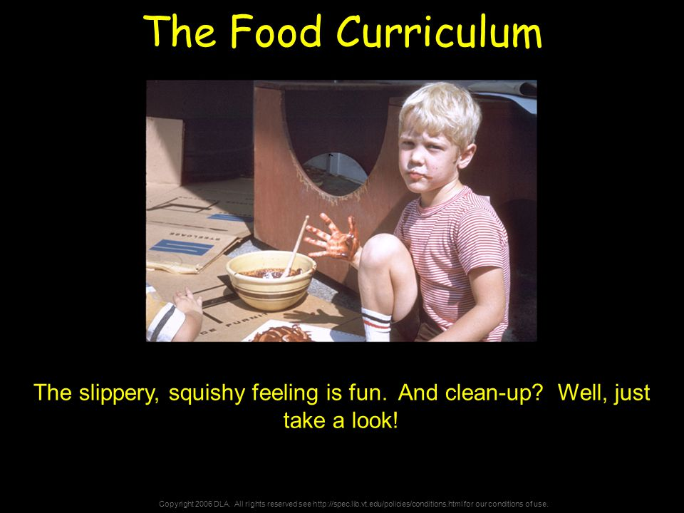 Copyright 2006 DLA. All rights reserved see http://spec.lib.vt.edu/policies/conditions.html for our conditions of use. The Food Curriculum The slipper