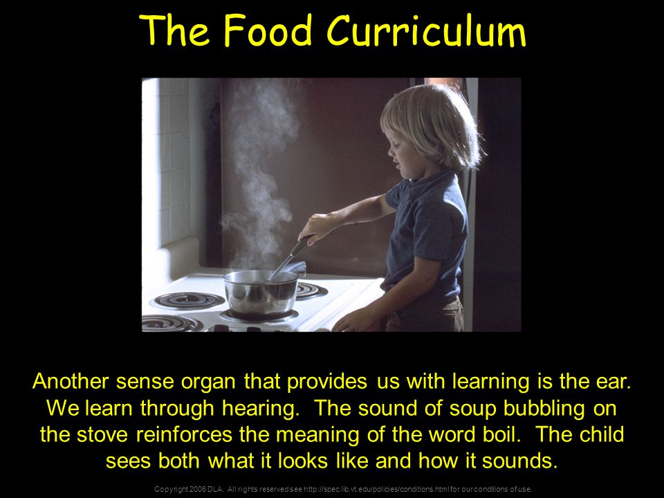 Copyright 2006 DLA. All rights reserved see http://spec.lib.vt.edu/policies/conditions.html for our conditions of use. The Food Curriculum Another sen