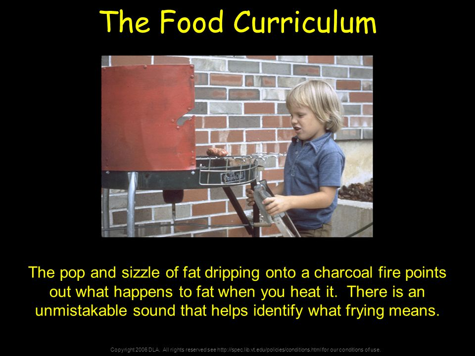 Copyright 2006 DLA. All rights reserved see http://spec.lib.vt.edu/policies/conditions.html for our conditions of use. The Food Curriculum The pop and