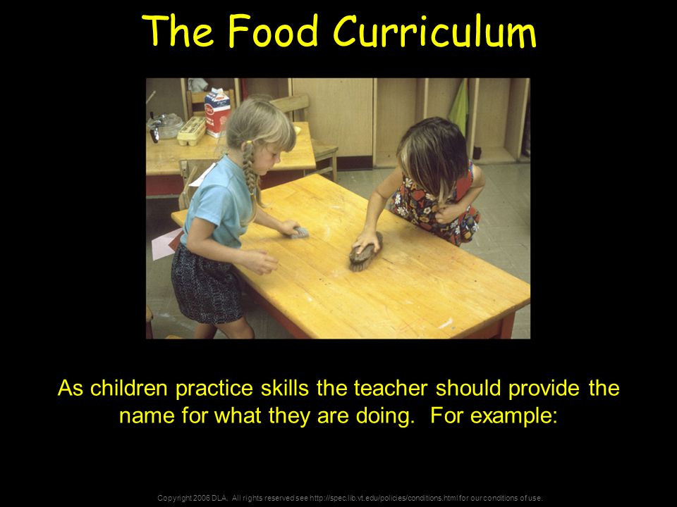 Copyright 2006 DLA. All rights reserved see http://spec.lib.vt.edu/policies/conditions.html for our conditions of use. The Food Curriculum As children