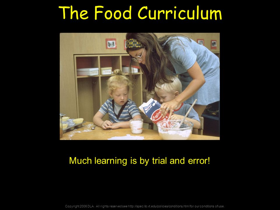 Copyright 2006 DLA. All rights reserved see http://spec.lib.vt.edu/policies/conditions.html for our conditions of use. The Food Curriculum Much learni