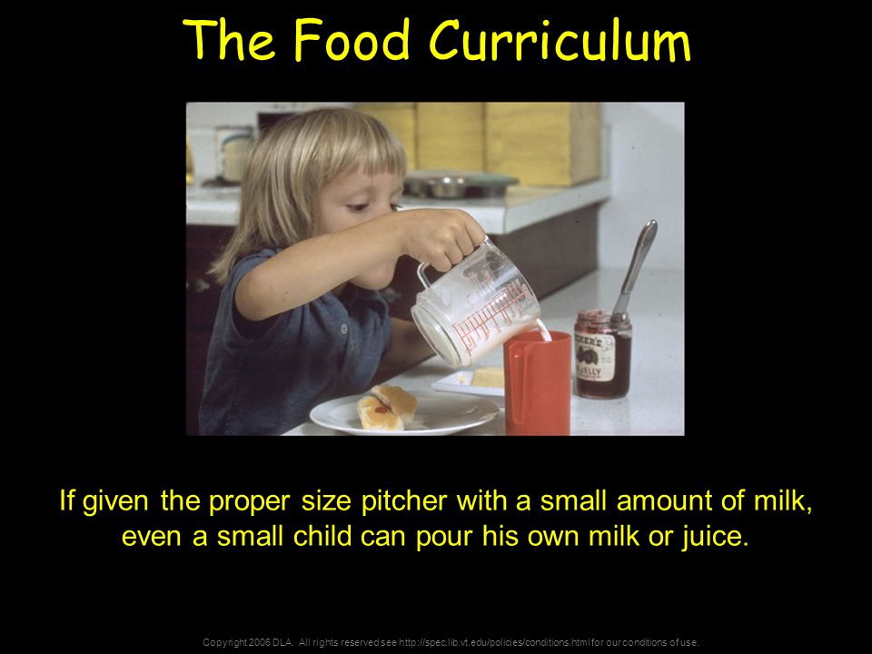 Copyright 2006 DLA. All rights reserved see http://spec.lib.vt.edu/policies/conditions.html for our conditions of use. The Food Curriculum If given th