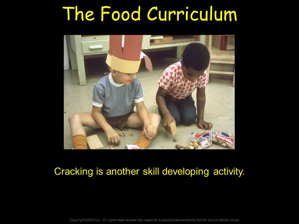 Copyright 2006 DLA. All rights reserved see http://spec.lib.vt.edu/policies/conditions.html for our conditions of use. The Food Curriculum Cracking is