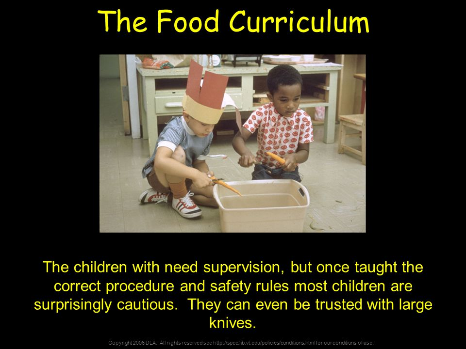 Copyright 2006 DLA. All rights reserved see http://spec.lib.vt.edu/policies/conditions.html for our conditions of use. The Food Curriculum The childre