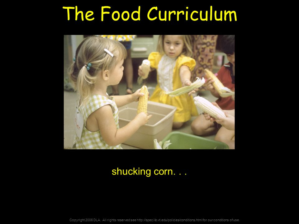 Copyright 2006 DLA. All rights reserved see http://spec.lib.vt.edu/policies/conditions.html for our conditions of use. The Food Curriculum shucking co