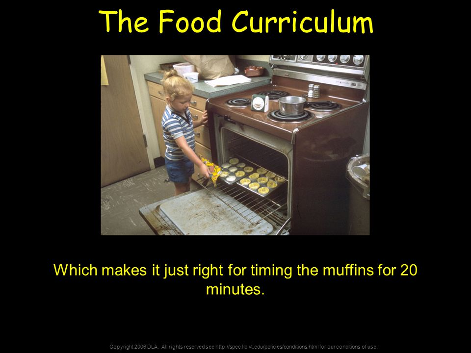 Copyright 2006 DLA. All rights reserved see http://spec.lib.vt.edu/policies/conditions.html for our conditions of use. The Food Curriculum Which makes