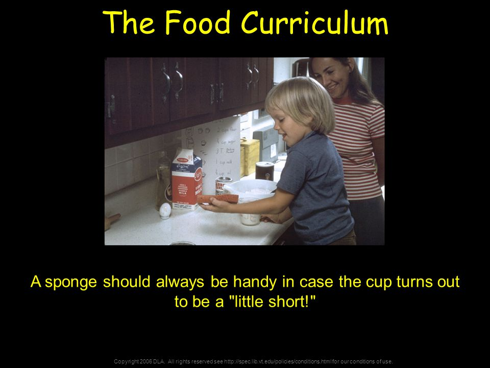 Copyright 2006 DLA. All rights reserved see http://spec.lib.vt.edu/policies/conditions.html for our conditions of use. The Food Curriculum A sponge sh