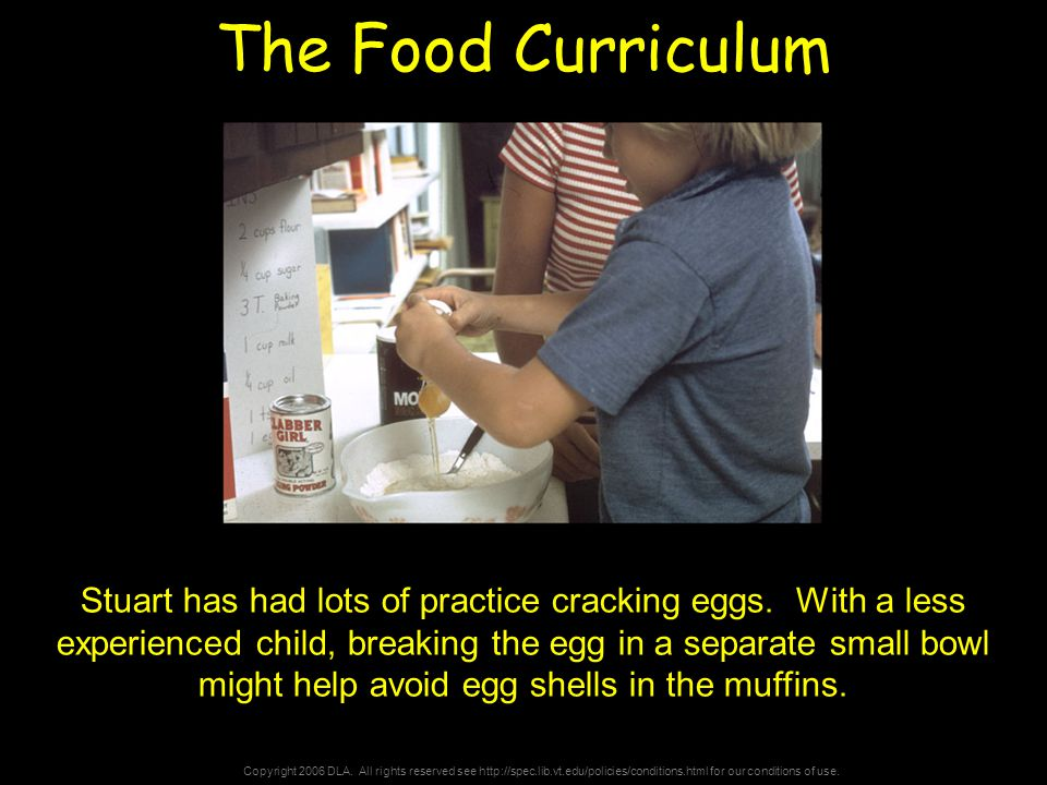 Copyright 2006 DLA. All rights reserved see http://spec.lib.vt.edu/policies/conditions.html for our conditions of use. The Food Curriculum Stuart has