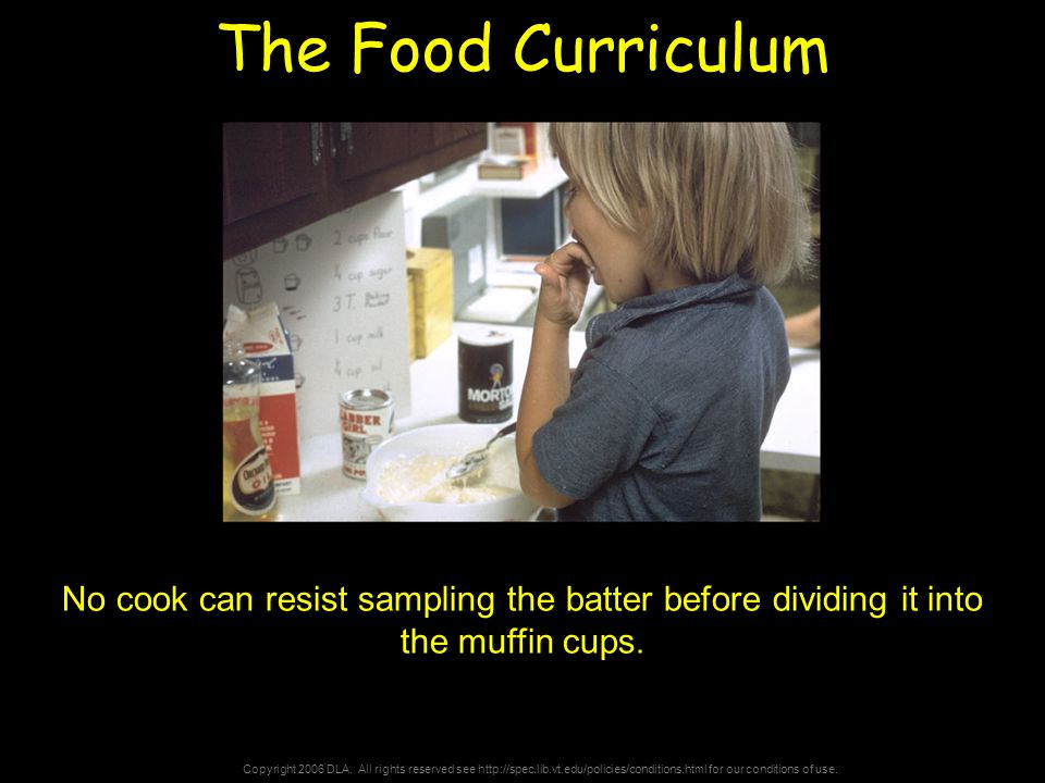 Copyright 2006 DLA. All rights reserved see http://spec.lib.vt.edu/policies/conditions.html for our conditions of use. The Food Curriculum No cook can