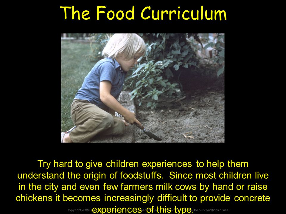 Copyright 2006 DLA. All rights reserved see http://spec.lib.vt.edu/policies/conditions.html for our conditions of use. The Food Curriculum Try hard to
