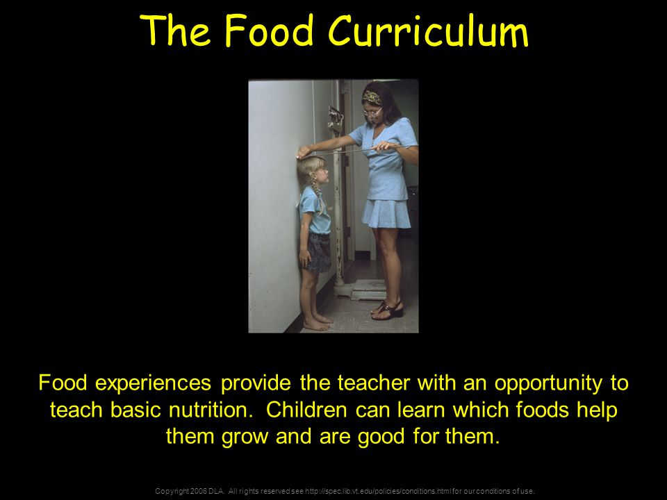Copyright 2006 DLA. All rights reserved see http://spec.lib.vt.edu/policies/conditions.html for our conditions of use. The Food Curriculum Food experi
