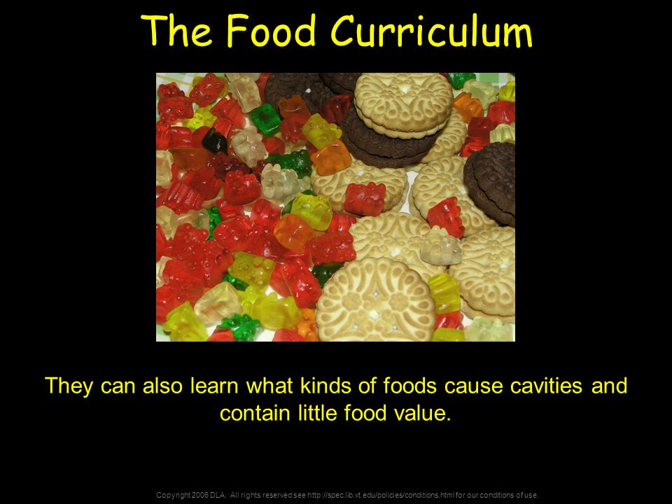 Copyright 2006 DLA. All rights reserved see http://spec.lib.vt.edu/policies/conditions.html for our conditions of use. The Food Curriculum They can al