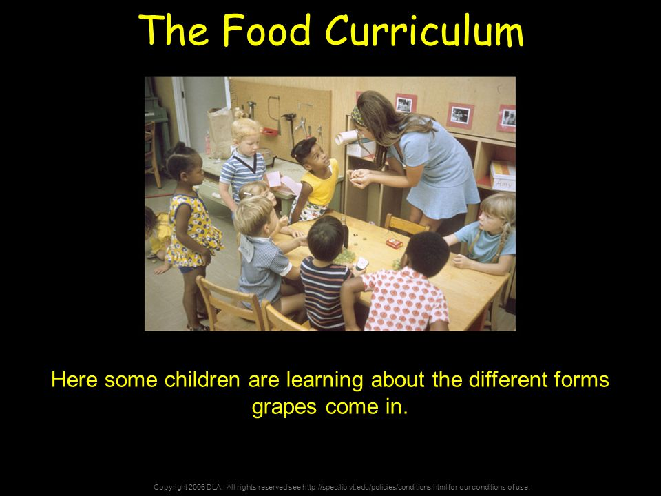 Copyright 2006 DLA. All rights reserved see http://spec.lib.vt.edu/policies/conditions.html for our conditions of use. The Food Curriculum Here some c