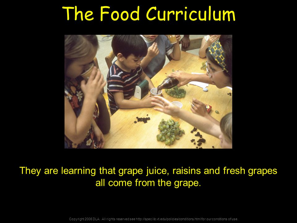 Copyright 2006 DLA. All rights reserved see http://spec.lib.vt.edu/policies/conditions.html for our conditions of use. The Food Curriculum They are le