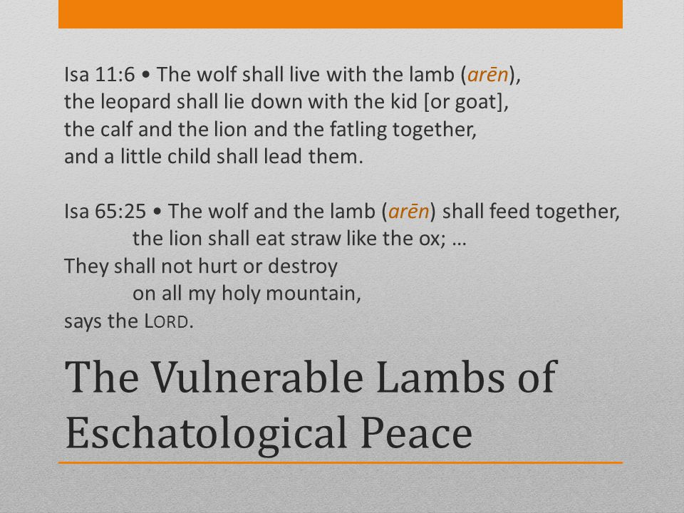 The Vulnerable Lambs of Eschatological Peace Isa 11:6 The wolf shall live with the lamb (arēn), the leopard shall lie down with the kid [or goat], the