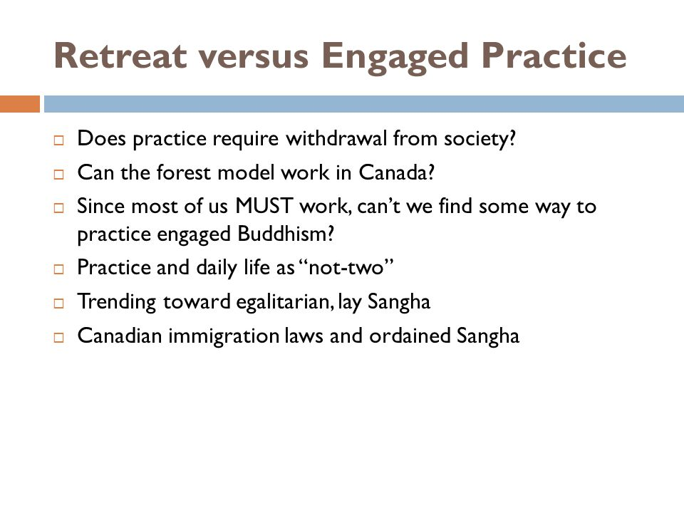 Retreat versus Engaged Practice Does practice require withdrawal from society.