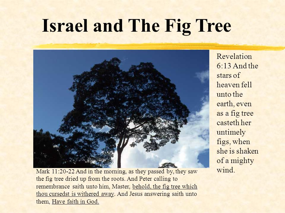Israel and The Fig Tree Revelation 6:13 And the stars of heaven fell unto the earth, even as a fig tree casteth her untimely figs, when she is shaken