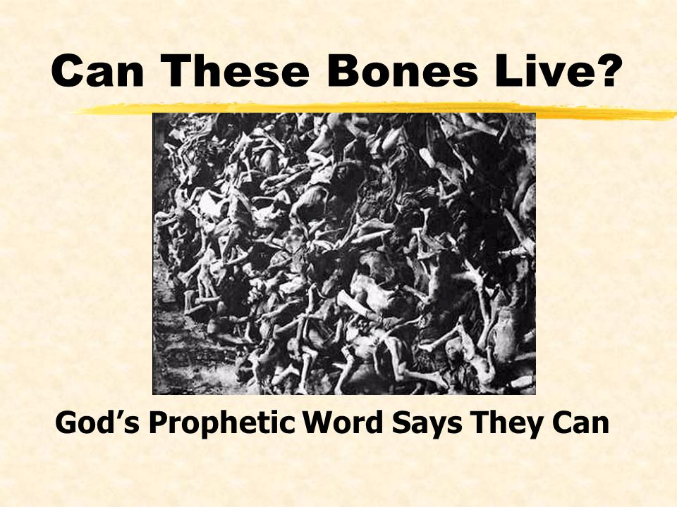 Can These Bones Live? Gods Prophetic Word Says They Can