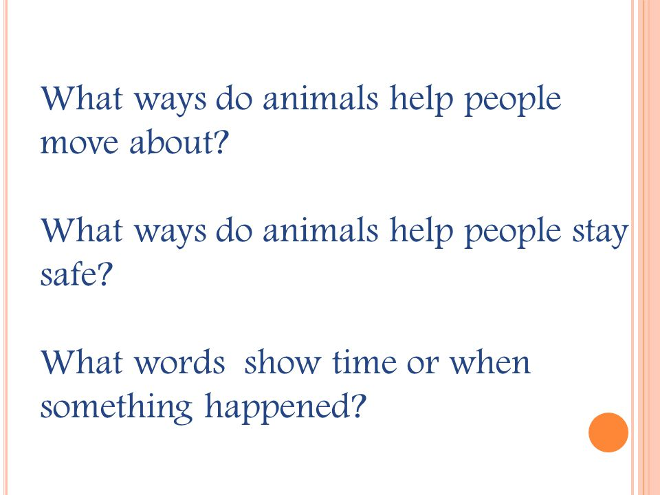 T HE B IG B LUE O X U NIT 1 / D AY 5 This week we read about animal friends from the past and the present.
