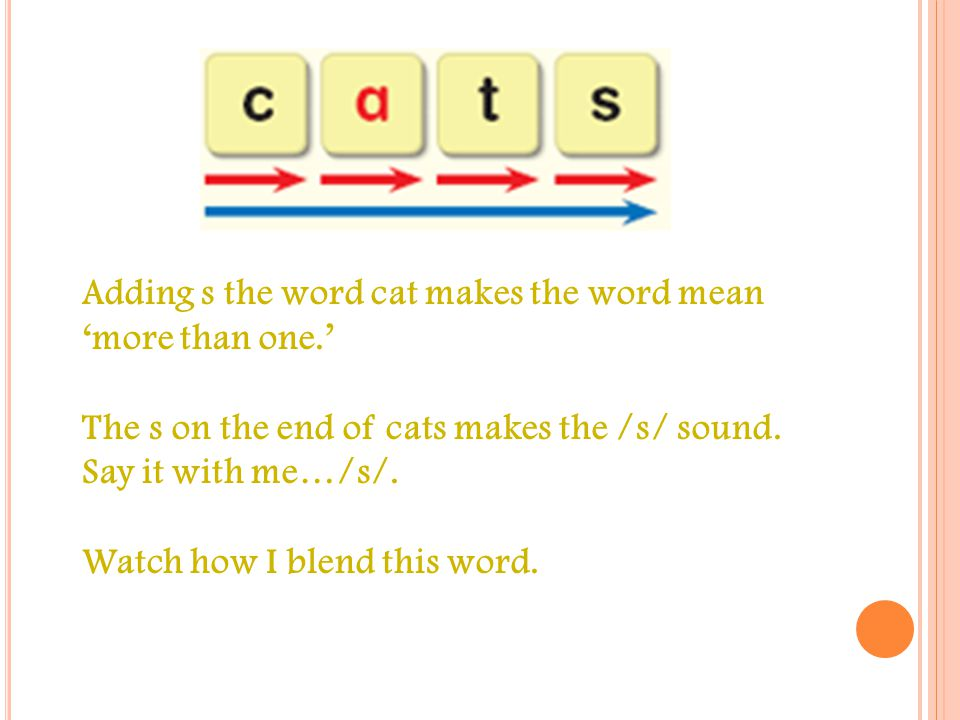 Y OU HAVE STUDIED WORDS LIKE THIS ONE … WHAT SOUND DO YOU HEAR IN THE MIDDLE OF CAT .