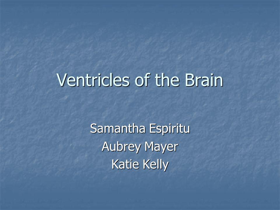 Ventricles of the Brain Samantha Espiritu Aubrey Mayer Katie Kelly