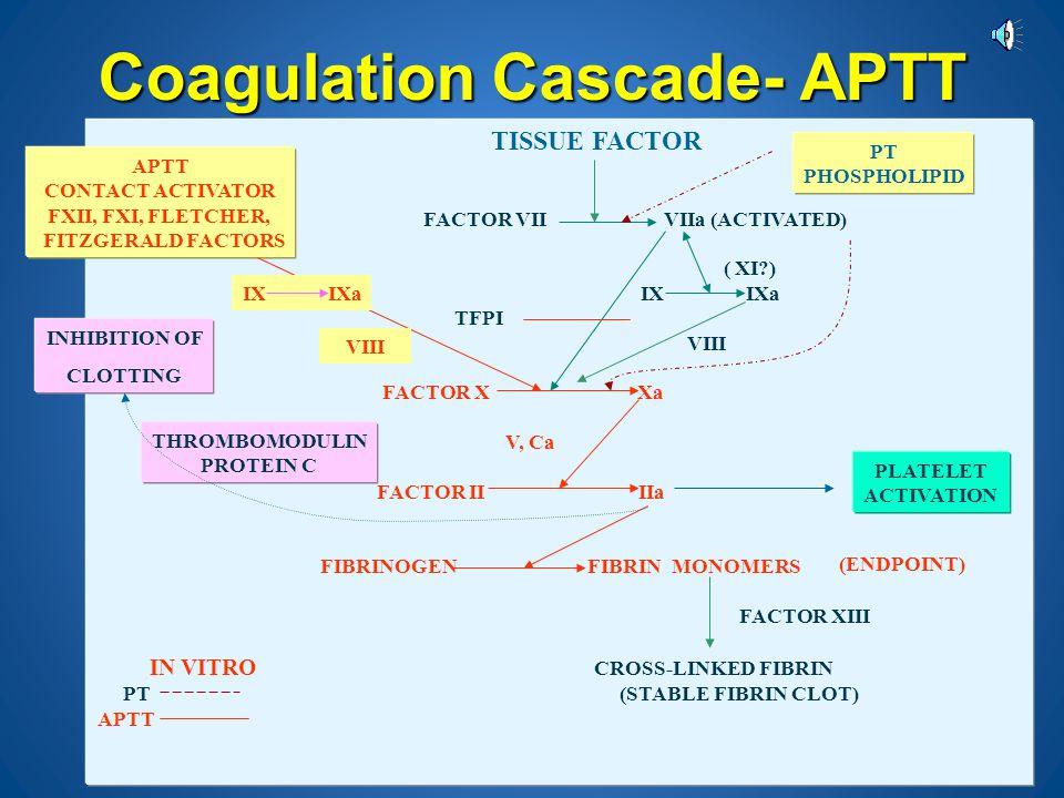Coagulation Cascade- PT TISSUE FACTOR FACTOR VII VIIa (ACTIVATED) ( XI?) IX IXa TFPI VIII FACTOR X Xa V, Ca FACTOR II IIa FIBRINOGEN FIBRIN MONOMERS F