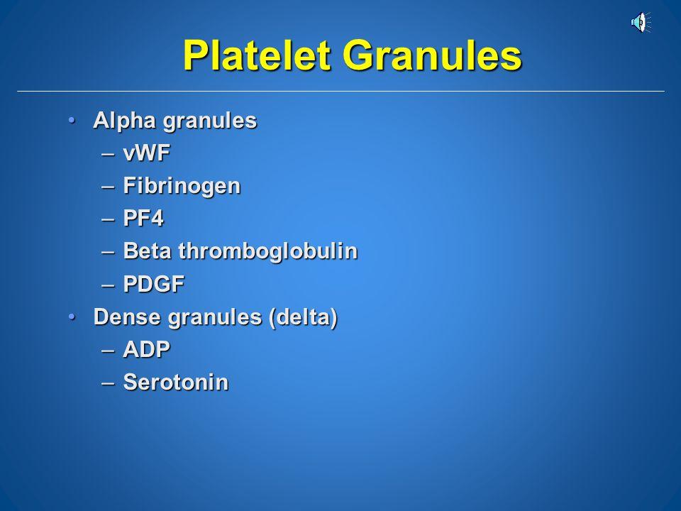 Platelet Components RECEPTORS vWF Fibrinogen Clotting Factors Alpha granules Dense Granules Actin Canaliculus