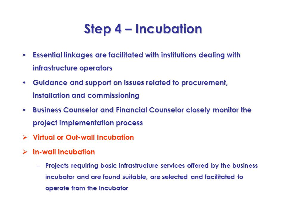 Step 4 – Incubation Essential linkages are facilitated with institutions dealing with infrastructure operators Essential linkages are facilitated with
