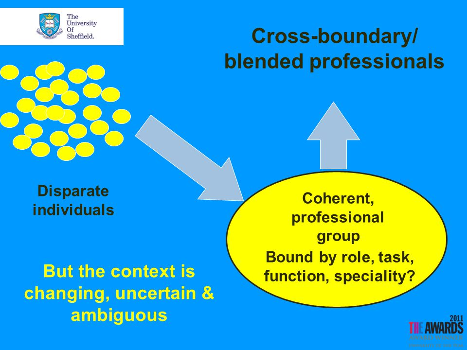 Coherent, professional group Disparate individuals Cross-boundary/ blended professionals Bound by role, task, function, speciality.