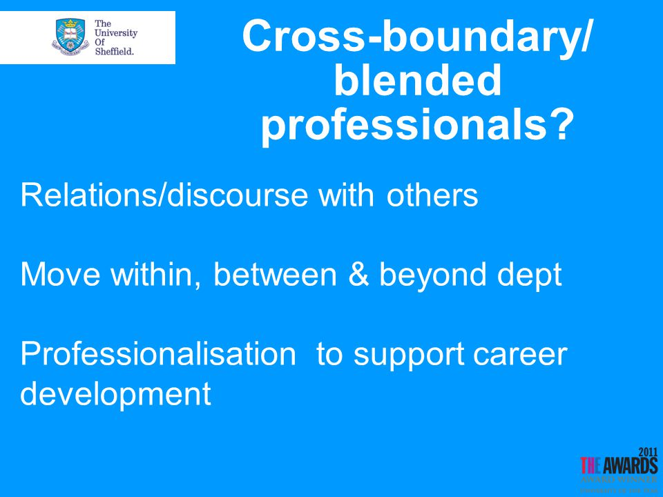 Cross-boundary/ blended professionals.