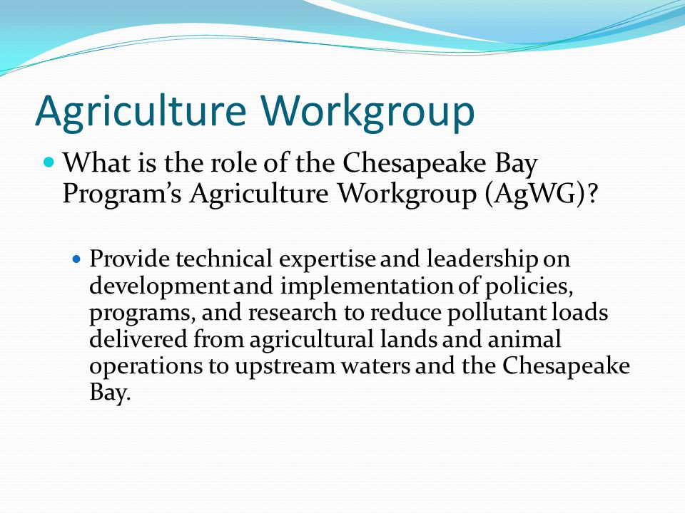 Agriculture Workgroup What is the role of the Chesapeake Bay Programs Agriculture Workgroup (AgWG)? Provide technical expertise and leadership on deve