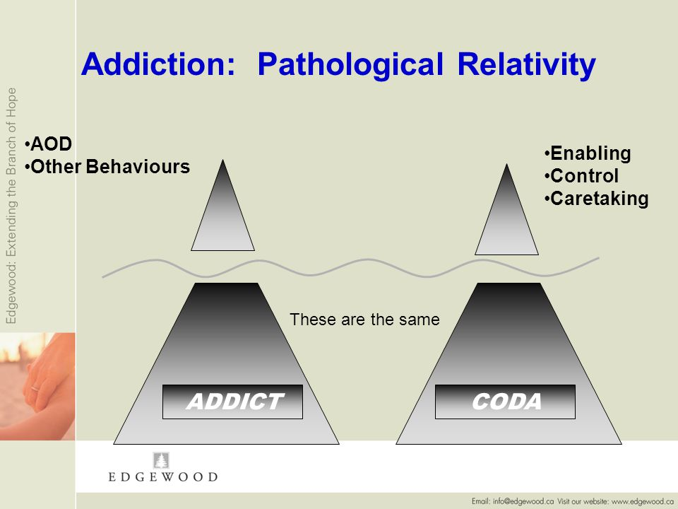Addiction: Pathological Relativity ADDICT AOD Other Behaviours Enabling Control Caretaking CODA These are the same
