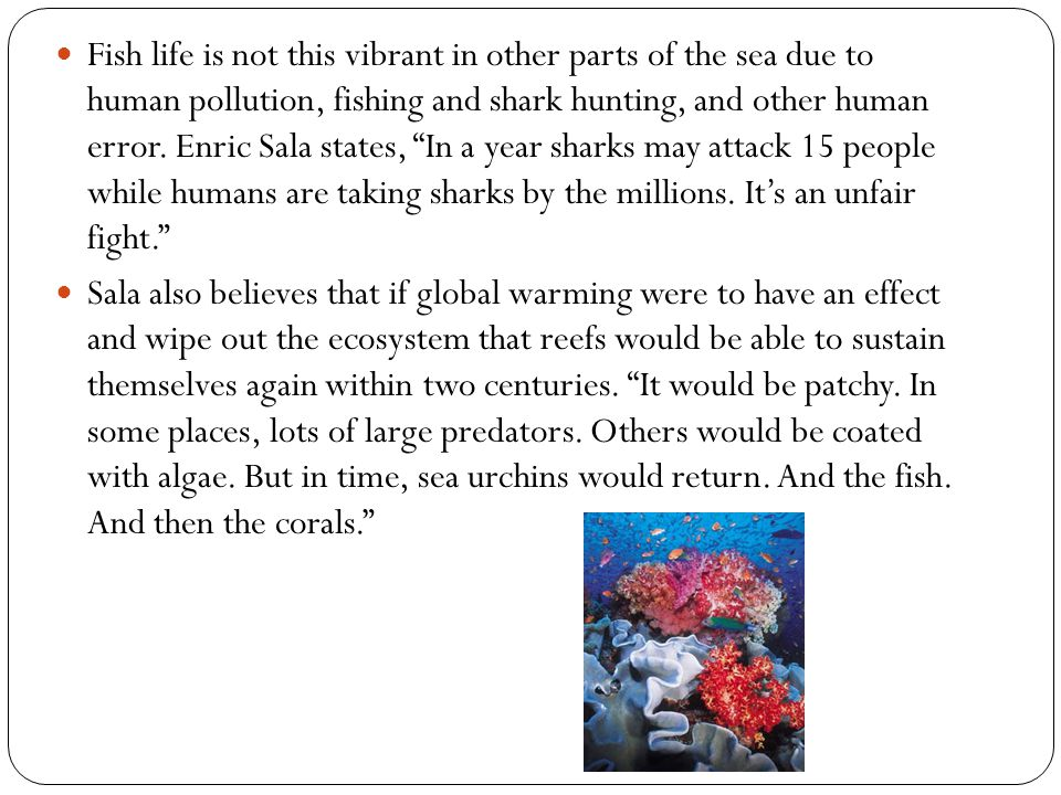 Fish life is not this vibrant in other parts of the sea due to human pollution, fishing and shark hunting, and other human error. Enric Sala states, I