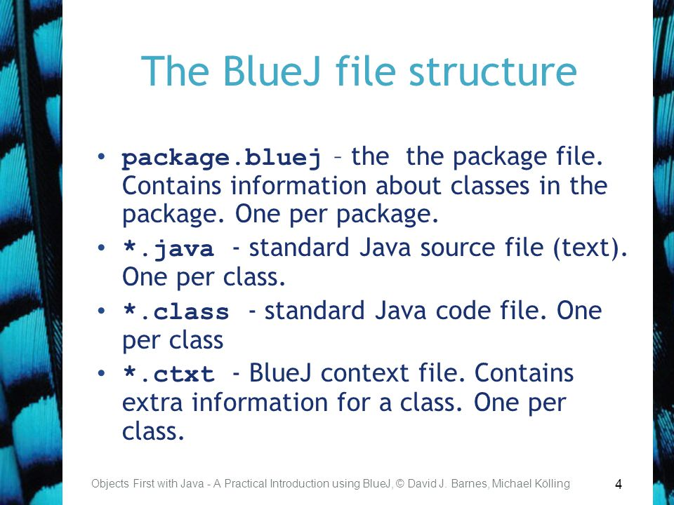 4 The BlueJ file structure package.bluej – the the package file. Contains information about classes in the package. One per package. *.java - standard
