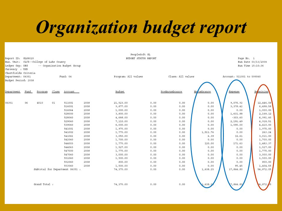 Organization budget report