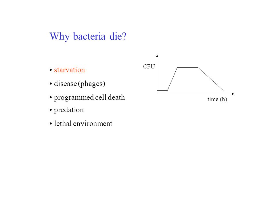 Why bacteria die.