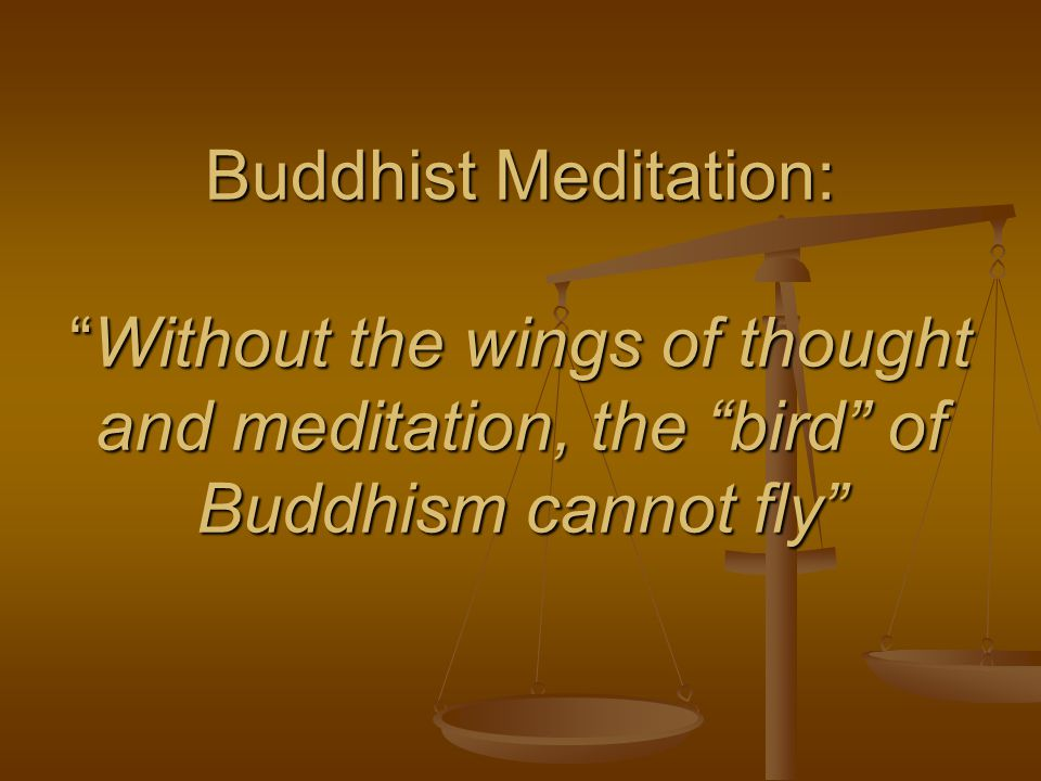 Buddhist Meditation:Without the wings of thought and meditation, the bird of Buddhism cannot fly