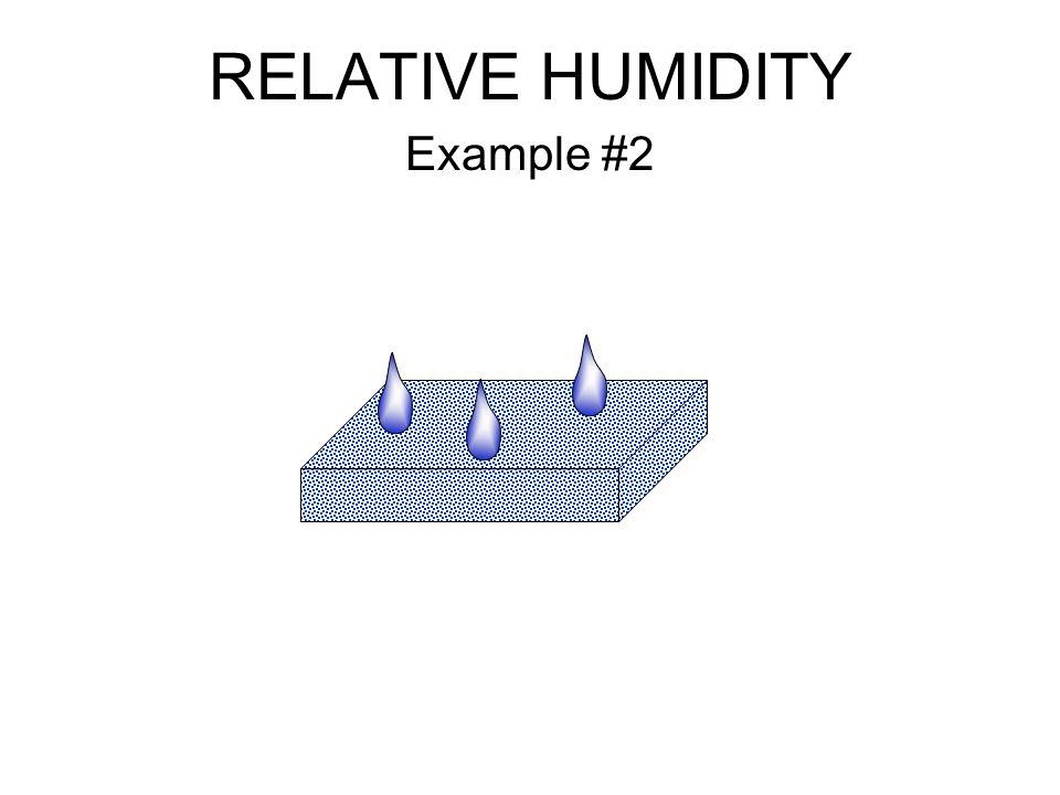 RELATIVE HUMIDITY Example #2