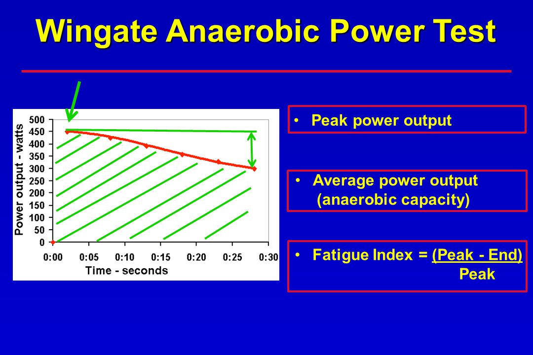 Peak power output Average power output (anaerobic capacity) Fatigue Index = (Peak - End) Peak Wingate Anaerobic Power Test