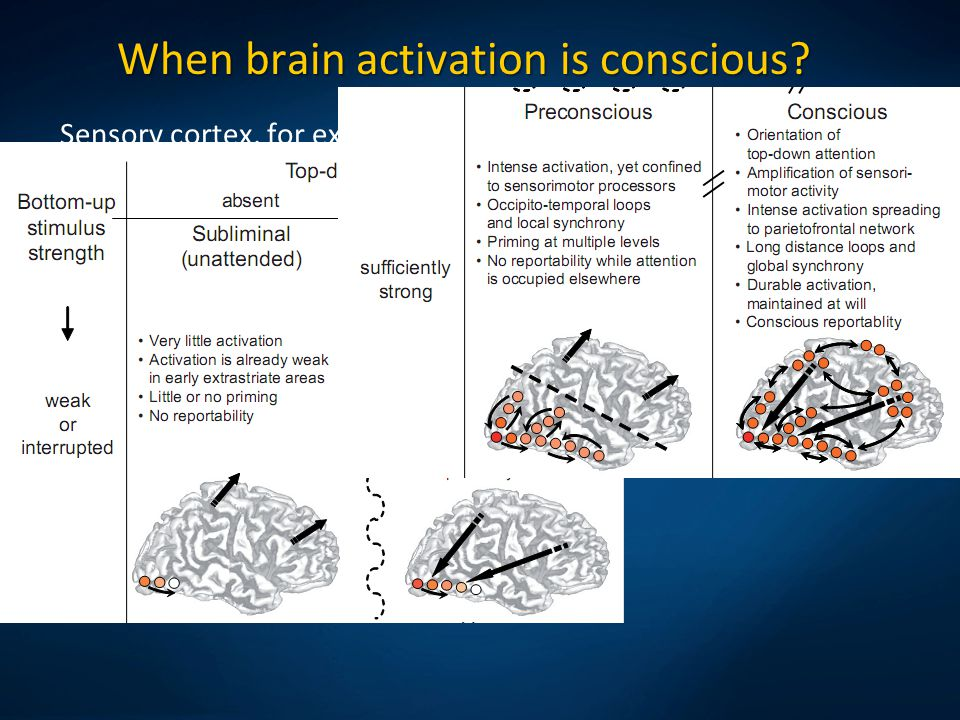 Sensory cortex, for example V4 for color, MT for movement. When brain activation is conscious? Bottom-up and top-down activations create resonant stat