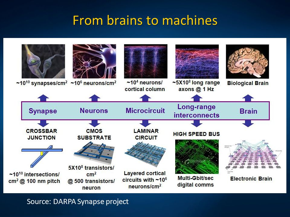 From brains to machines Source: DARPA Synapse project