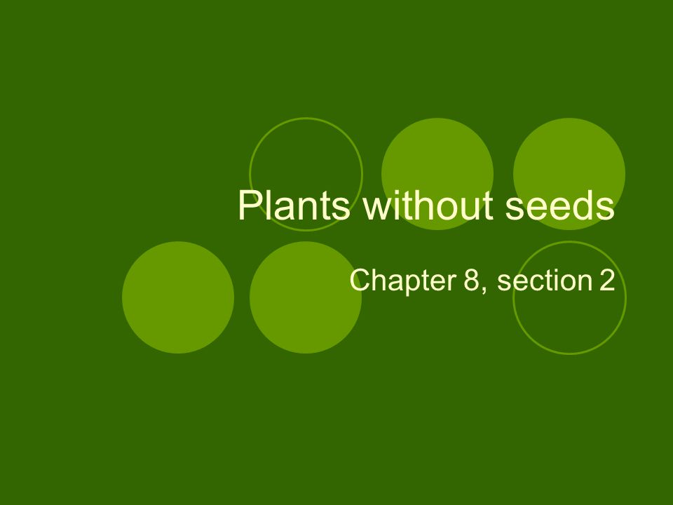 Plants without seeds Chapter 8, section 2