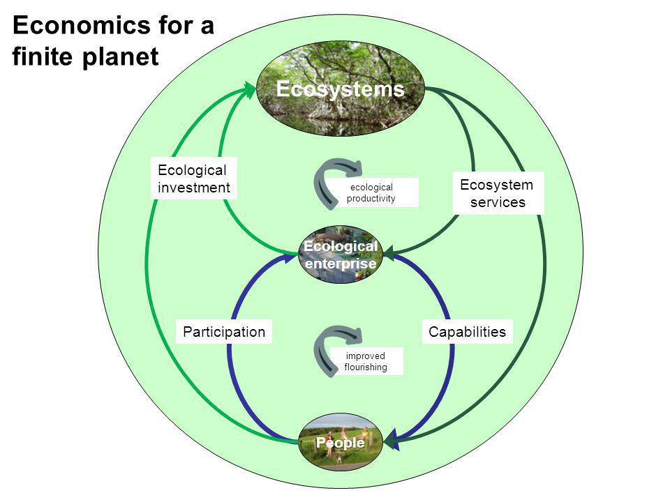 Ecological enterprise People Ecosystems Ecological investment Ecosystem services ParticipationCapabilities ecological productivity improved flourishin