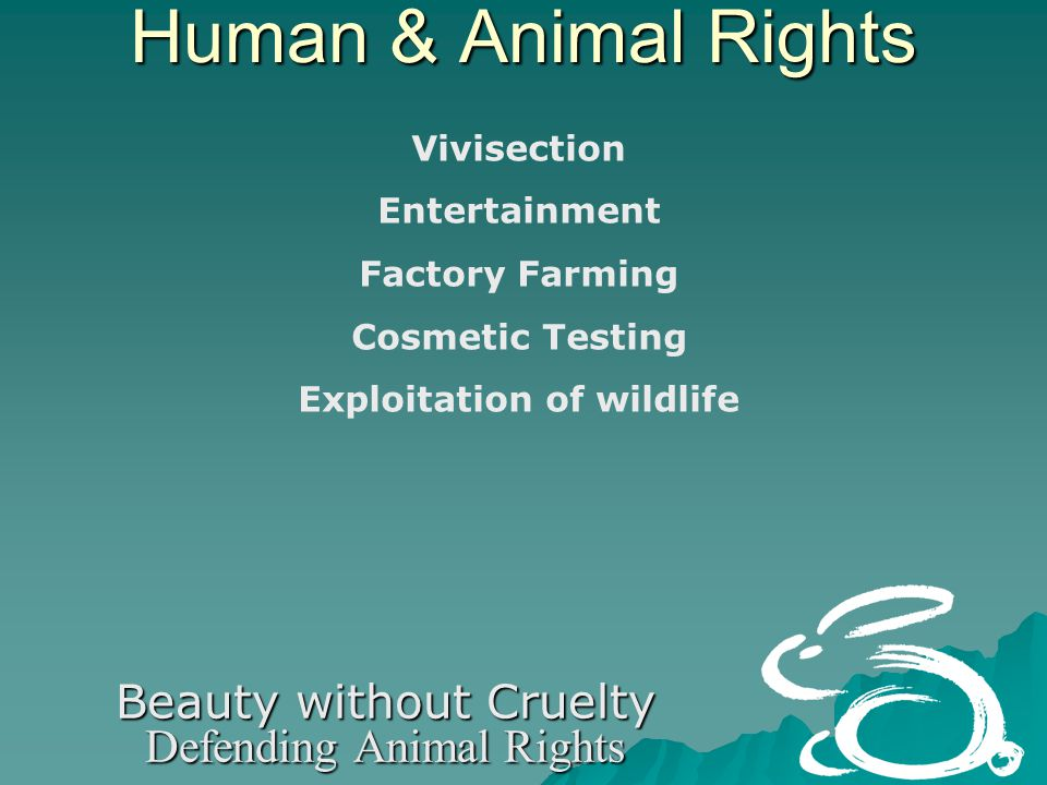 Human & Animal Rights Beauty without Cruelty Defending Animal Rights Vivisection Entertainment Factory Farming Cosmetic Testing Exploitation of wildlife