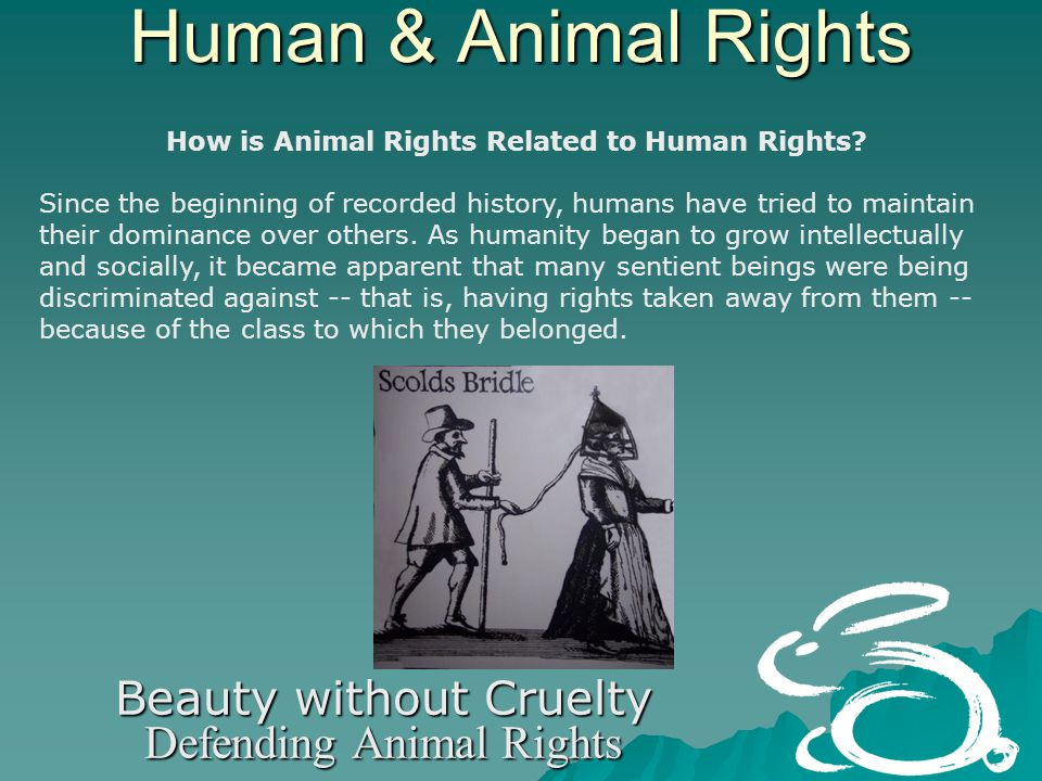 Human & Animal Rights Beauty without Cruelty Defending Animal Rights Bigger brains, sharper senses, and longer lives are three of the many reasons why women should lead the family and the world.