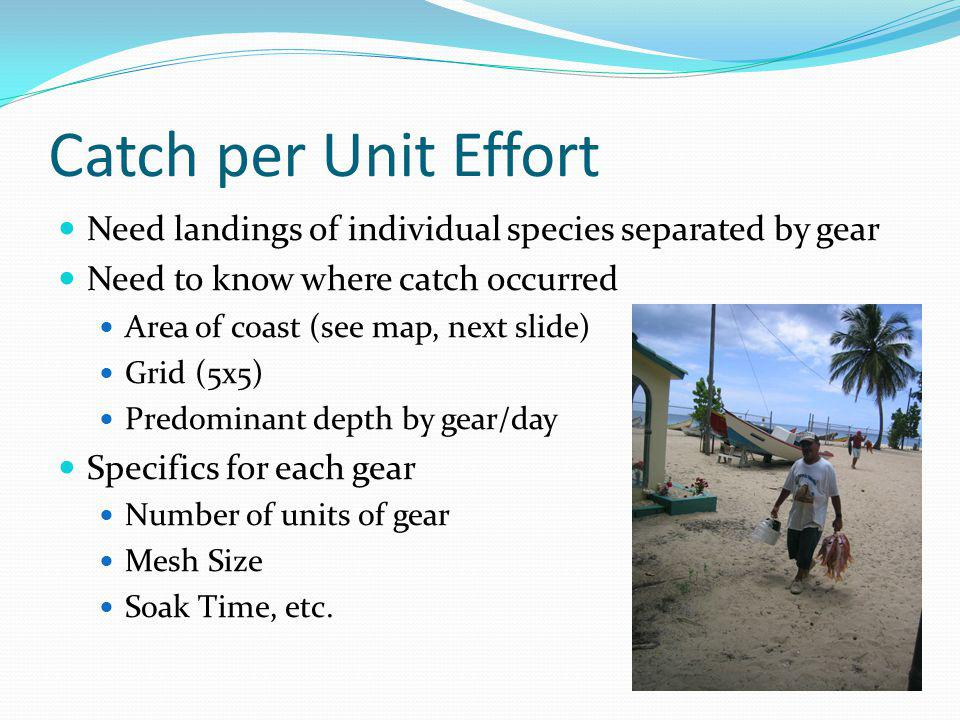 Catch per Unit Effort Need landings of individual species separated by gear Need to know where catch occurred Area of coast (see map, next slide) Grid (5x5) Predominant depth by gear/day Specifics for each gear Number of units of gear Mesh Size Soak Time, etc.