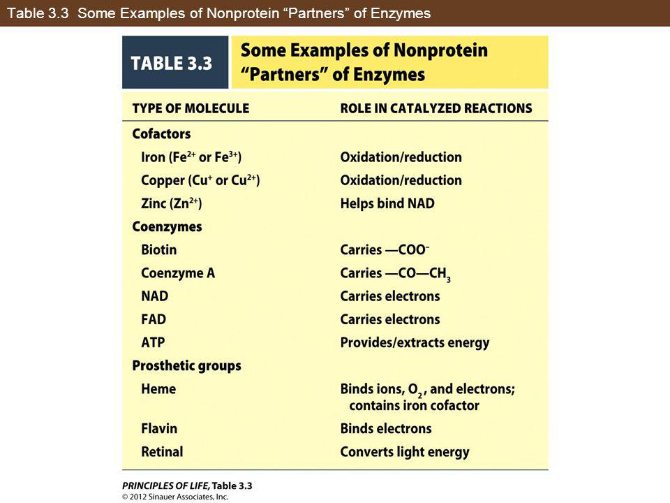 Table 3.3 Some Examples of Nonprotein Partners of Enzymes